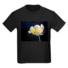 Flowers: Tulip T