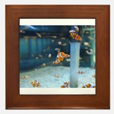 Little Fishy Framed Tile