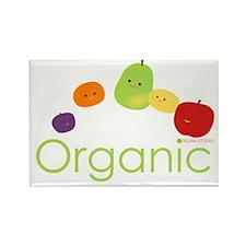 """Organic Fruits 2"" Rectangle Magnet"