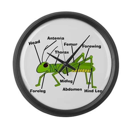 Grasshopper Anatomy Gails.PNG Large Wall Clock
