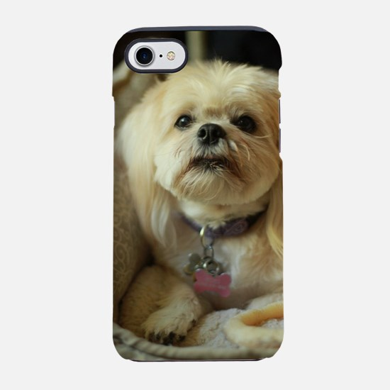 indoor dogs Koko blond small l iPhone 7 Tough Case