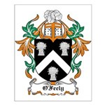 O'Feely Coat of Arms Small Poster