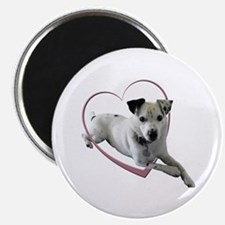 Love Jack Russell Dog Magnet