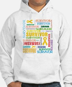 Survivor Childhood Cancer Hoodie
