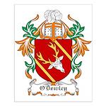 O'Dowley Coat of Arms Small Poster