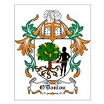 O'Donlon Coat of Arms Small Poster