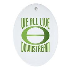 Downstream Oval Ornament