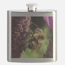 Bumblebee Flask