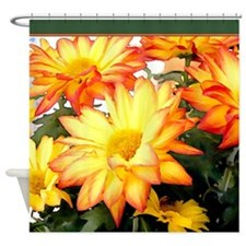 Rust and Gold Mums Shower Curtain
