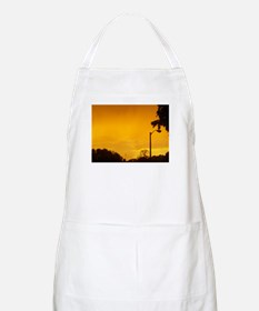 Yellow Twlight Apron