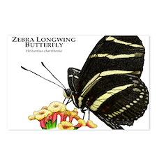 Zebra Longwing Butterfly Postcards (Package of 8)