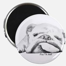"Sleepy Head 2.25"" Magnet (100 pack)"
