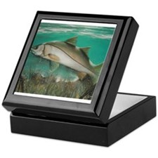 Snook Keepsake Box