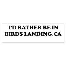 Rather: BIRDS LANDING Bumper Bumper Sticker