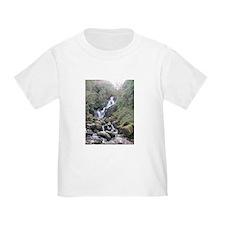 Torc waterfall T
