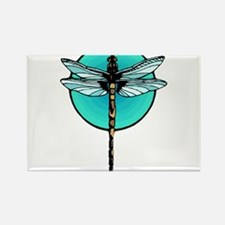 Graphic Dragonfly in Aqua Circle Rectangle Magnet