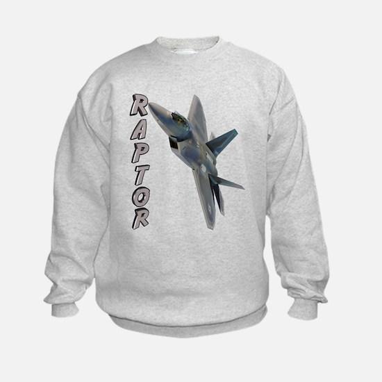 Air Force F22 Raptor Jumpers