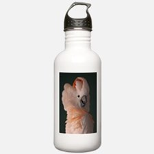 Moluccan Cockatoo Sports Water Bottle