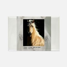 Golden Dream Horse Rectangle Magnet