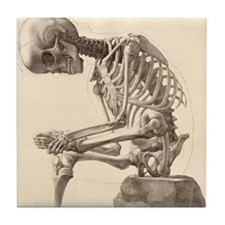 Vintage Anatomy Square Tile Coaster