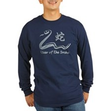 Year of The Metal Snake 1941 2001 T
