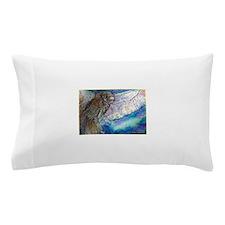 Owl! Wildlife art! Pillow Case