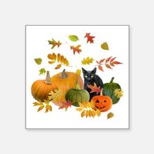 "Black Cat Pumpkins Square Sticker 3"" x 3"""