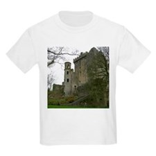 Scenic Ireland Blarney Castle Kids T-Shirt