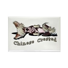 Flirty Chinese Crested Rectangle Magnet (100 pack)