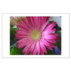Pink Daisy Princess Posters