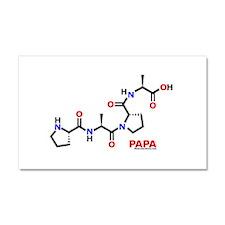 Papa molecularshirts.com Car Magnet 20 x 12