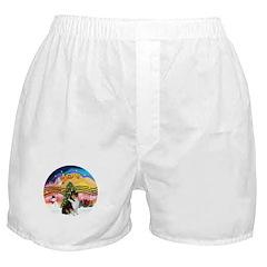 XMusic2-Collie (Tri) Boxer Shorts