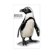 African Penguin Decal