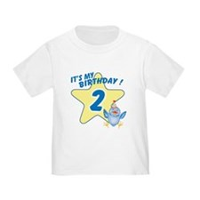Birthday Star 2 T