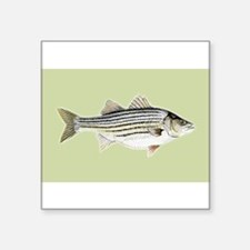 "Striper Square Sticker 3"" x 3"""