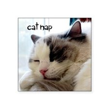 "catnap.png Square Sticker 3"" x 3"""