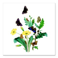 Butterflies of Summer Square Car Magnet 3