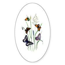 Butterflies of Summer Decal