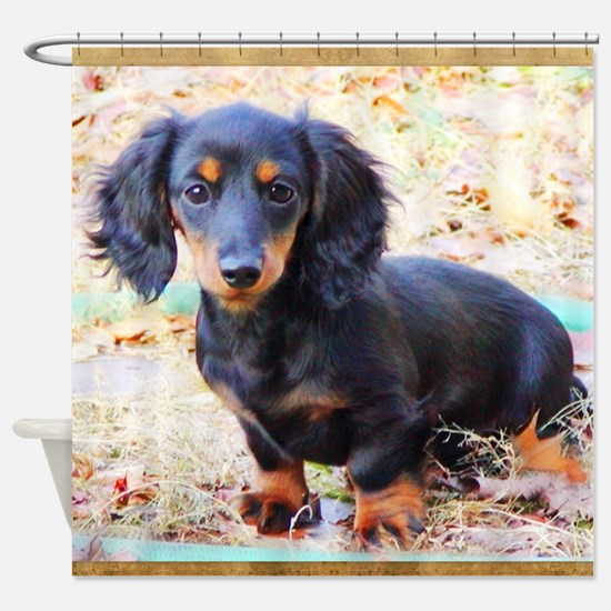 Puppy Love Doxie Shower Curtain