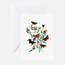 Butterflies of Summer Greeting Cards (Pk of 10)