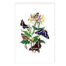 Butterflies and Honeysuck Postcards (Package of 8)