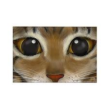 Rectangle Bengal Eyes Magnet