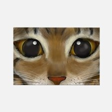 Rectangle Bengal Eyes Magnet