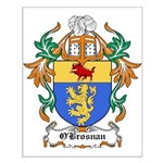 O'Brosnan Coat of Arms Small Poster