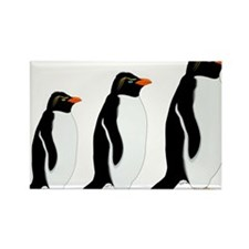Penguin Parade Rectangle Magnet