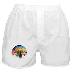 XMusic2 - Doberman (Nat) Boxer Shorts