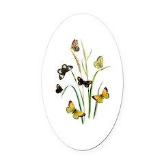 Butterflies of Summer Oval Car Magnet