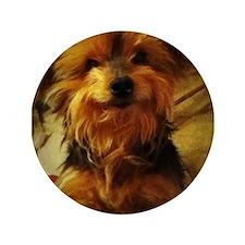 "silky dog 3.5"" Button"