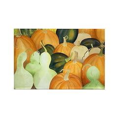 Pumpkins & Gourds Rectangle Magnet