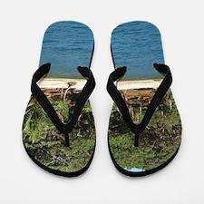 Roatan Flip Flops